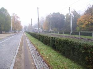 Tramwaje na Placu Powstańców  Śląskich 1